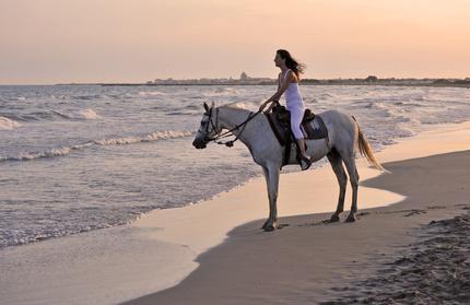 bd3b7781f8b7 Promenade à cheval en Camargue