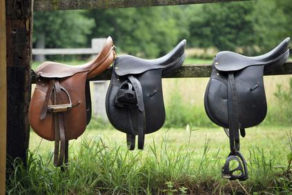 comment choisir sa selle de cheval. Black Bedroom Furniture Sets. Home Design Ideas