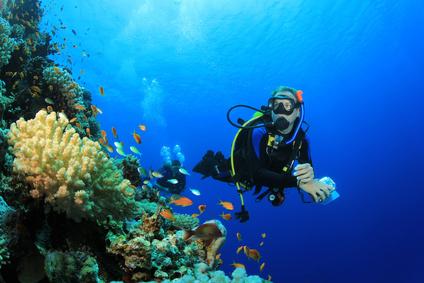 Conditions pour faire de la plongée sous marine